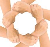 United hands. Isolated on white background Stock Image