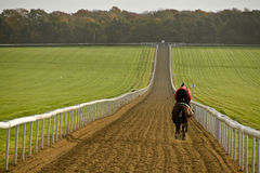 United Kingdom - Newmarket. United Kingdom in pictures, jockey ridng his horse during the daily training session in the morning at the gallops in Newmarket Stock Image