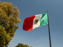 United Mexican States Estados Unidos Mexicanos flag. In wind Royalty Free Stock Photo