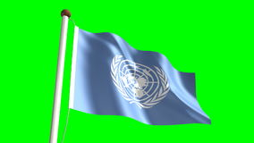 United Nations flag stock video