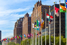 United Nations Headquarters with flags of the   members of the U Royalty Free Stock Photos