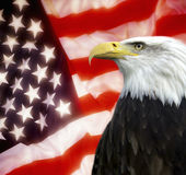 United States of America. Patriotism - The United States of America - North American Bald Eagle Royalty Free Stock Photography