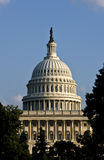 The United States Capitol. Building in Washington DC Stock Images