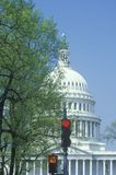 United States Capitol Royalty Free Stock Photos
