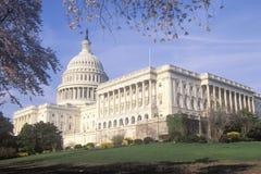 United States Capitol Stock Image