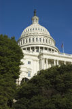 United States Capitol Building. Through trees Royalty Free Stock Photos