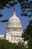 United States Capitol Building. Throug Trees Stock Photo