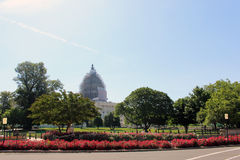 United States Capitol Building. Flowers blooming in front of the US Capitol Building in Washington, DC stock images