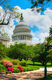 United States Capitol building in Washington, DC. On a sunny day Stock Photography