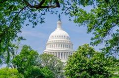 United States Capitol building. Washington DC, USA royalty free stock photo