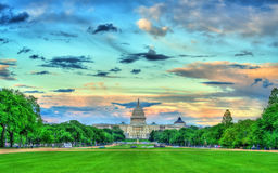 The United States Capitol on the National Mall in Washington, DC. The United States Capitol on the National Mall in Washington, D.C Stock Images