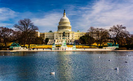 The United States Capitol and reflecting pool in Washington, DC. stock image