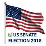2018 United States elections. US midterm elections 2018: the race for Congress. Symbol of republican government. Decision of voter. Democracy campaign. Vote royalty free illustration