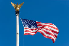The United States flag. With eagle Royalty Free Stock Image