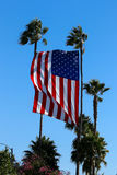 United States Flag Flies With Palms. A property in Huntington Beach CA USA is displaying a beautiful huge USA flag between two tall palm trees. This is in stock images