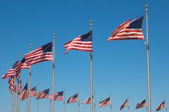 United States Flags around Washington monument, W Stock Images