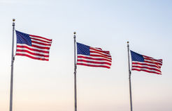 United States Flags Flying in the Wind  2 Royalty Free Stock Photography