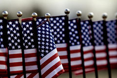 United States Flags in a row Stock Photography