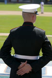 United States Marine at Baseball Game. Standing at parade rest behind the home dugout Stock Images