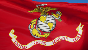 United States Marine Corps flag in slow motion seamlessly looped with alpha. United States Marine Corps flag waving in slow motion against blue sky, seamlessly stock video