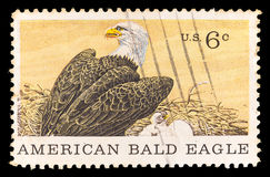 United States postage stamp showing American Bald Eagle Stock Image