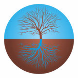 The unity of opposites. Tree and roots in blue and brown circles Stock Images