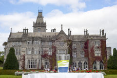 Unity wedding glass in front of adare manor Stock Images