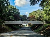 univ de Carolina Student Bridge del sur Foto de archivo