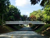 univ de Carolina Student Bridge del sur Fotos de archivo