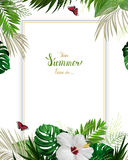 Universal invitation, congratulation card with green tropical palm Stock Photography