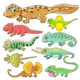 Universal lizard cartoon set. stock illustration