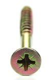Universal screw Stock Image