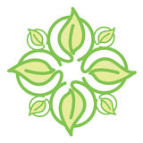 Icon green leaves Royalty Free Stock Image