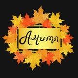 Universalkarte mit Saisonahornblättern Fall lässt Fahne mit goldener Funkelnbeschaffenheit auf einem schwarzen Hintergrund Lizenzfreie Stockfotos