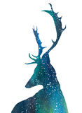Universe Deer stock illustration