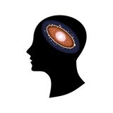 Universe in head. The vector illustration dedicated to the man and space Stock Photography