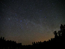 Universe stars and night forest atmosphere. Night sky stars and forest atmosphere Royalty Free Stock Image