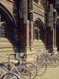 Universidad fotografía de archivo libre de regalías