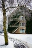 Universidad de Aarhus en invierno - parquee con la nieve, Dinamarca Fotos de archivo libres de regalías