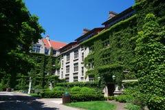 Universidad de Chicago en verano, IL, Imagenes de archivo