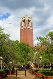 Universidad de la Florida foto de archivo libre de regalías