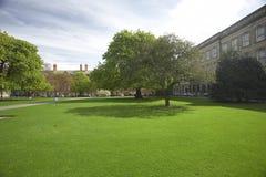 Universidad de la trinidad fotos de archivo