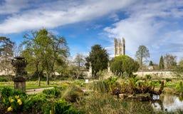 Universidad de los jardines botánicos de Oxford Fotos de archivo libres de regalías