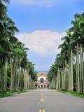 Universidad de Taiwán nacional - el bulevar de la palma real. Foto de archivo