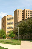 Universidade de Colorado do norte Imagens de Stock