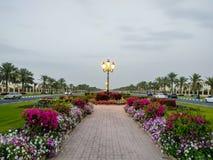 A universidade de estradas bonitas do terreno de Sharjah com decorações da flora, UAE imagem de stock