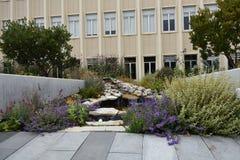 A universidade de San Francisco, 14 imagem de stock