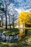 Universidade do Hokkaido em Autumn Season Imagem de Stock Royalty Free