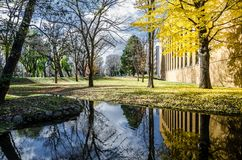 Universidade do Hokkaido em Autumn Season Foto de Stock