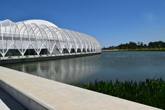 Universidade do instituto politécnico de Florida Fotos de Stock Royalty Free